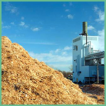 Alasia Franco Woodchips for Energy Purposes