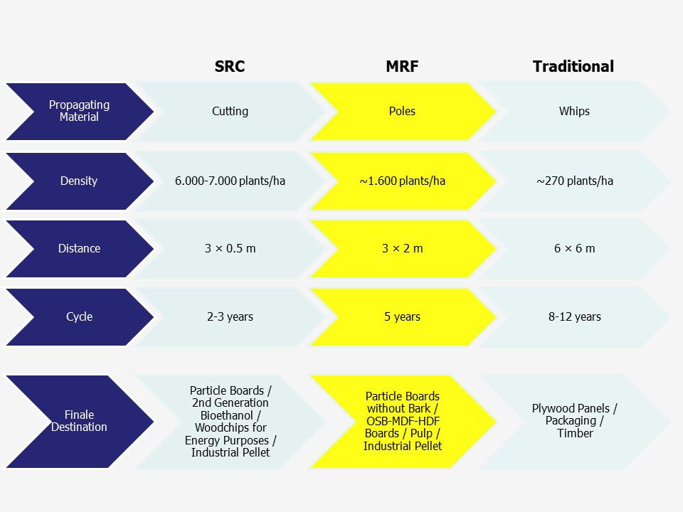 Alasia Franco MRF Comparative Table