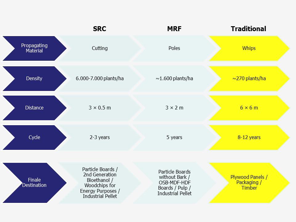 Alasia Franco Traditional Comparative Table