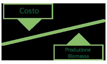 Alasia Franco bilancia-costo-short