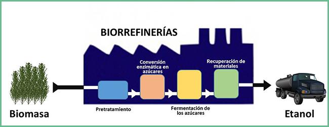 Bioetanol De Segunda Generación | Alasia Franco Vivai