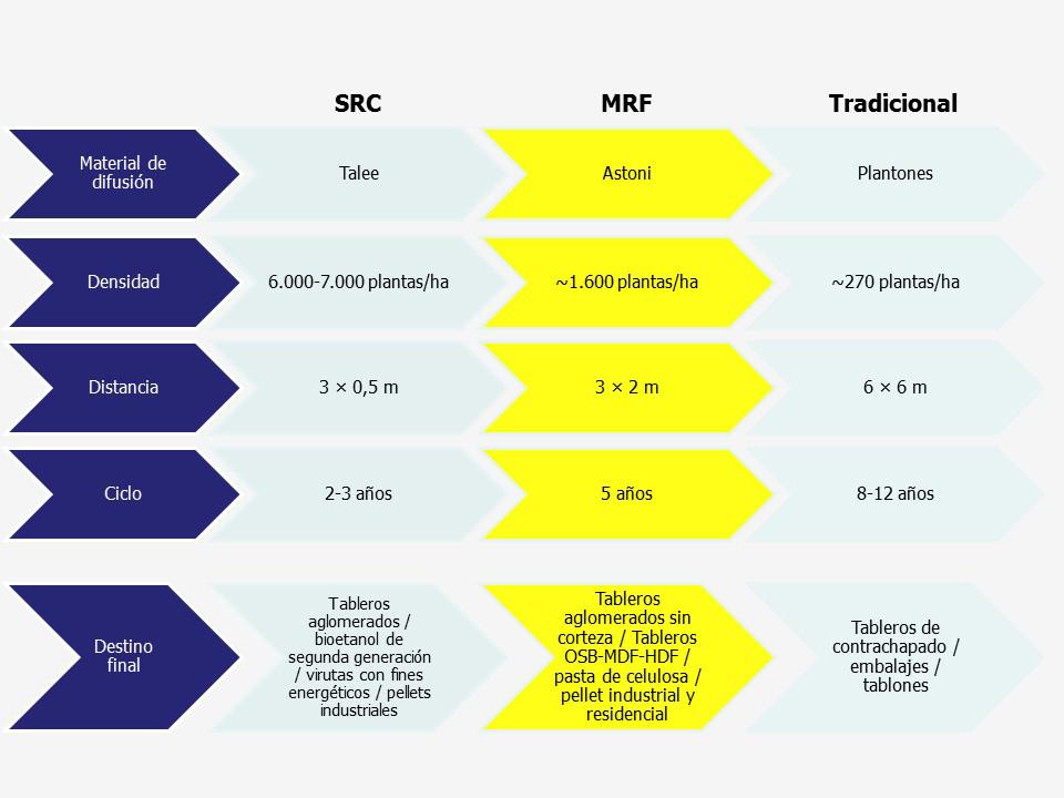 Alasia Franco Tabla comparativa MRF