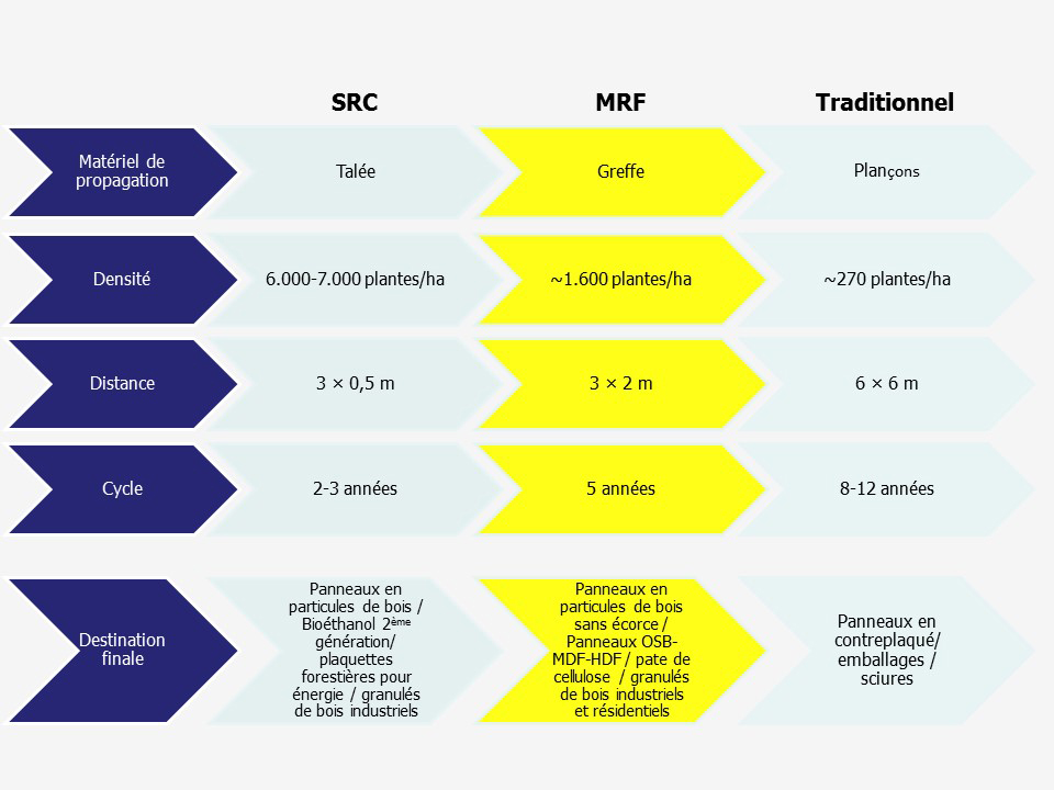 Tableau comparatif MRF