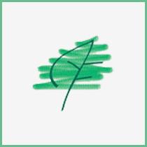 alasia franco foglia logo