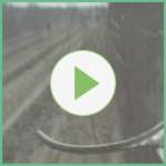 Alasia Franco Video Taglio Diretto